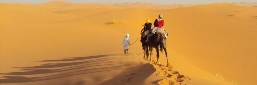 CamelTrekking