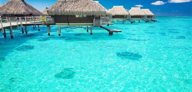 maldives b
