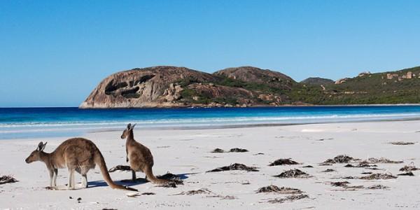 Perth Australia IMG e