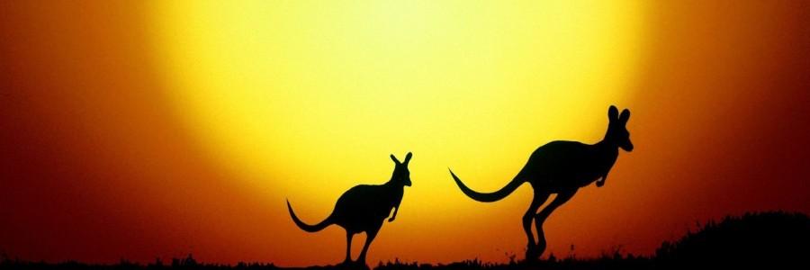 australia travelfree e