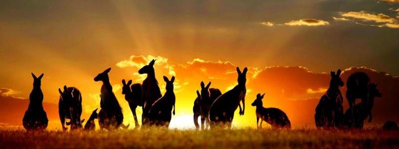 Australia wallpaper