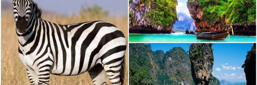 afrika tailandas