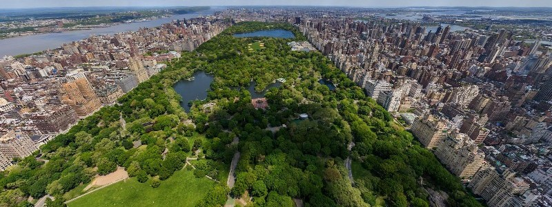 new york park view