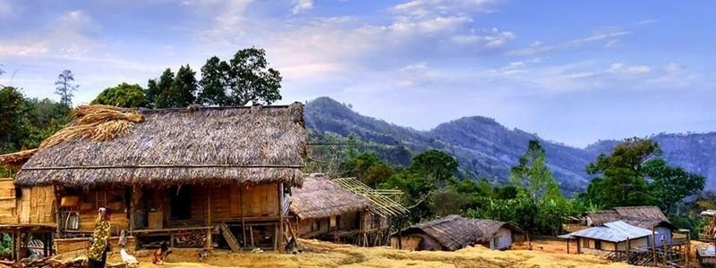 Bangladesh xl