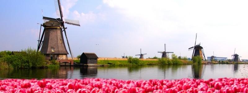 Netherlands xl