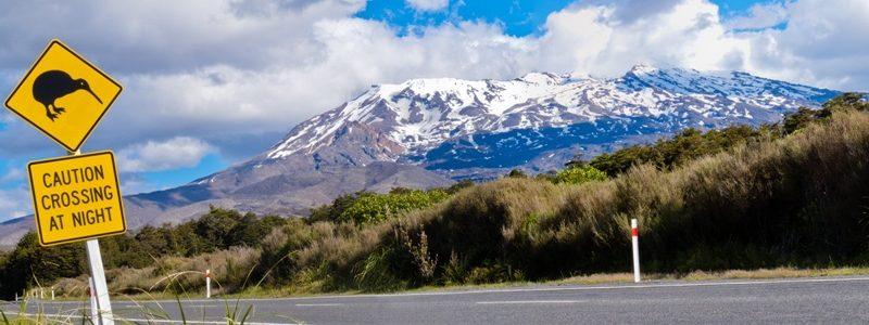 New Zealand xl