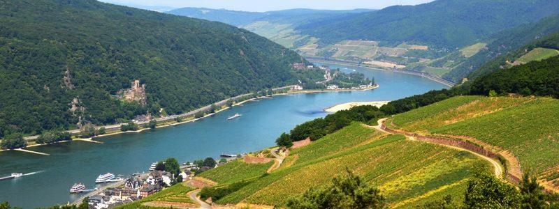 Rhine river l