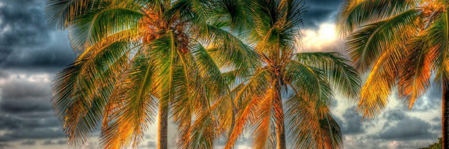 Puerto Rico   Flickr e