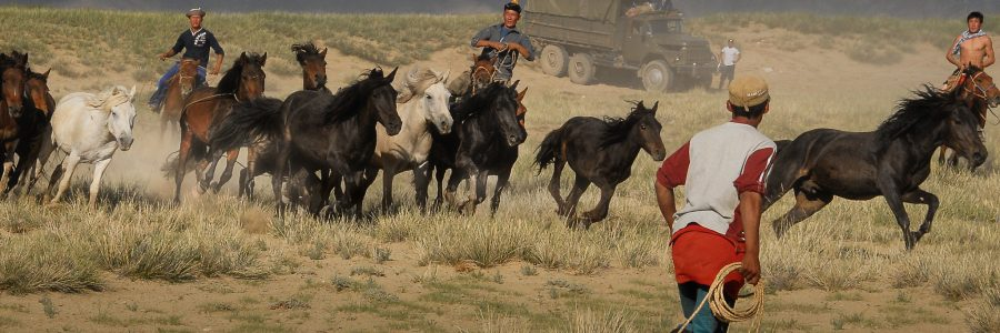 mongolia flickr