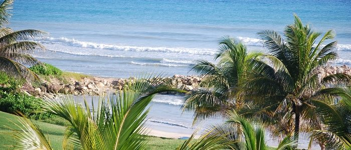 jamaica   sumažintas