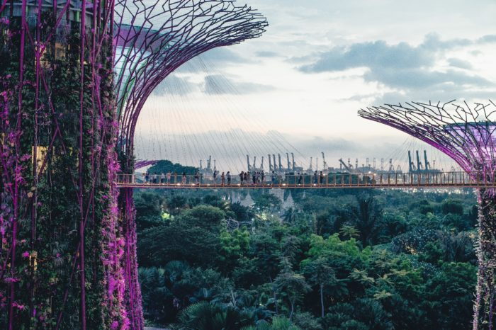 ERROR FARE flights to SINGAPORE from Amsterdam for €233! - TravelFree