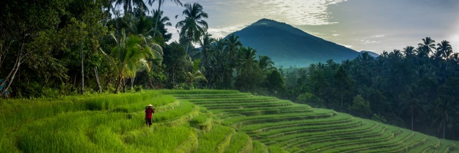 hit cheap flights from amsterdam to indonesia jakarta bali for