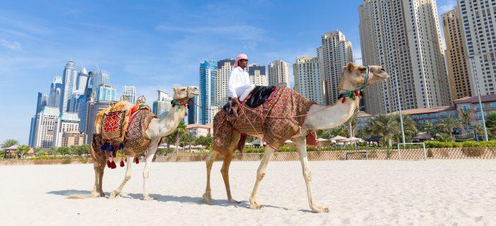 Best Way To Book Dubai Hotels