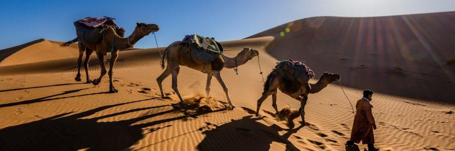 morocco-450911