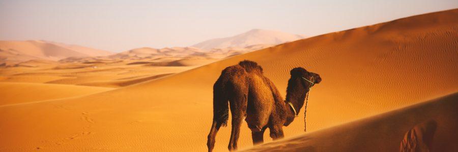 morocco-564575-unsplash