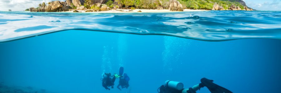 seychelles Divers below the surface in Seychelles exploring corlas