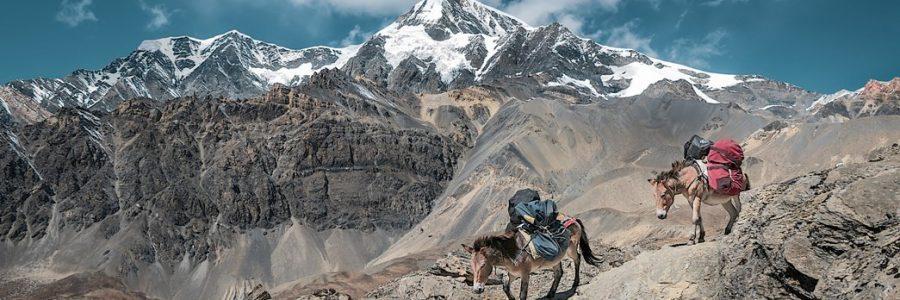 nepal-576332-unsplash