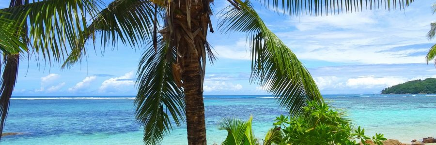 seychelles-1405052_1280
