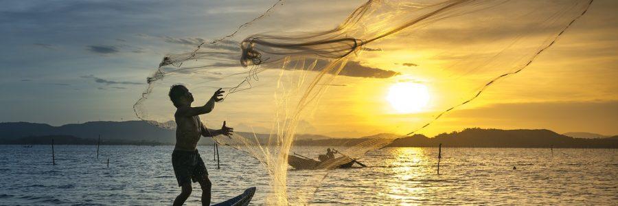 vietnam-3062034_1280