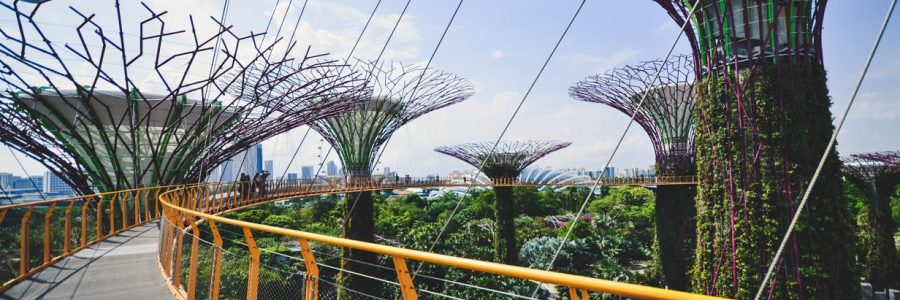 Singapore_tan-533662-unsplash