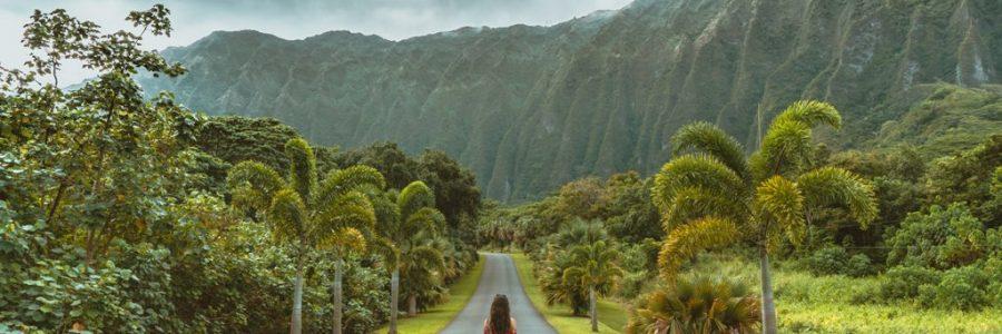 hawaii-589644-unsplash