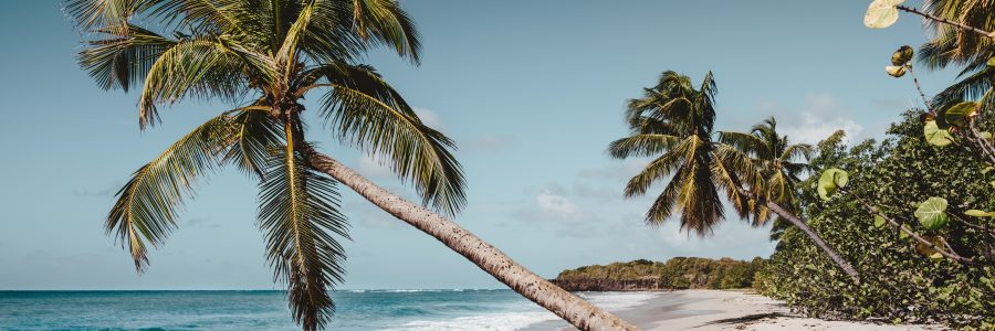 HIGH SEASON! One-way flights from Paris to Martinique for ...