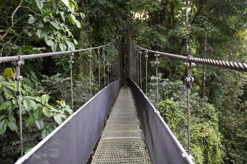 monteverde cloud forest reserve costa rica